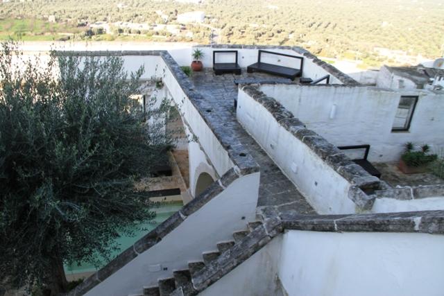 le terrazze e gli ulivi in lontananza