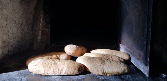 Fontes Episcopi ad Aragona
