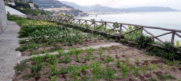 I Giardini di Fuenti